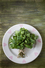 Bunch of fresh mint on a plate