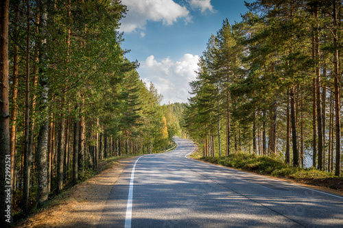 Road through northern forest