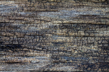 Old crack wooden texture