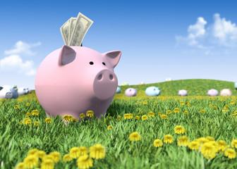 Piggy bank on the green grass