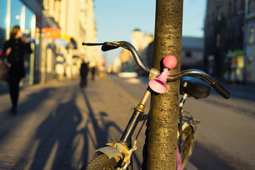 Bicycle with a pink signal in a tree on the street