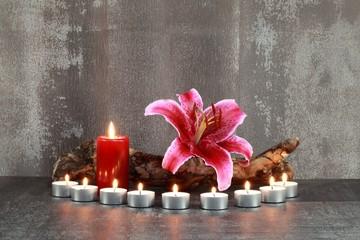 Stillleben : Lilie und Kerzen
