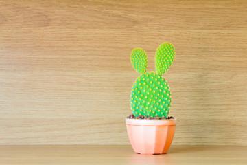Opuntia cactus in brown pot on wooden shelf