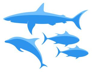 Shark. Tuna. Dolphin