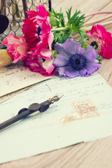 pink anemone flowers  with old retro  quill pen