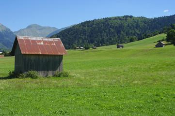 Bauges - Alpage