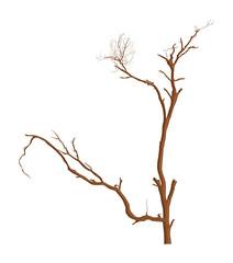 Drawing Art of Dead Tree