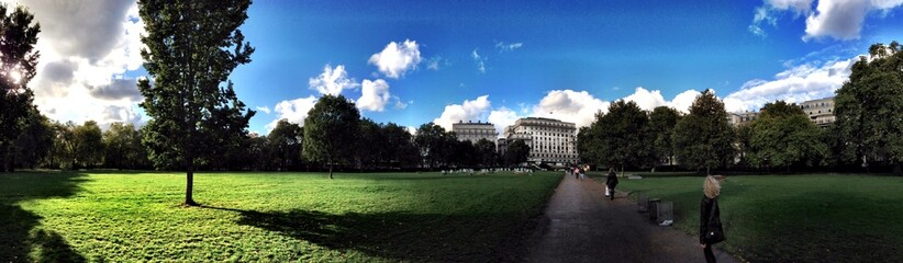 Green park view in London