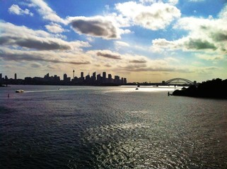 Sydney skyline with harbour bridge