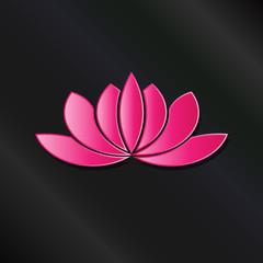 Leafy Lotus plant pink asian color.