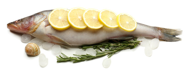 Fresh fish with ice and lemon isolated on white