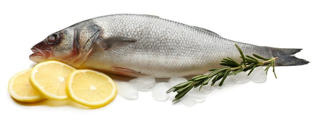 Fresh fish with ice, lemon and rosemary isolated on white