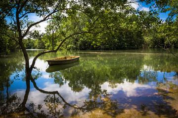 Reflections on Pulau Ubin
