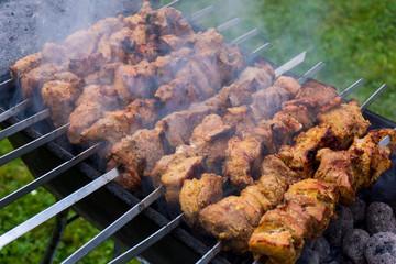 Grilled marinated caucasus barbecue meat shashlik
