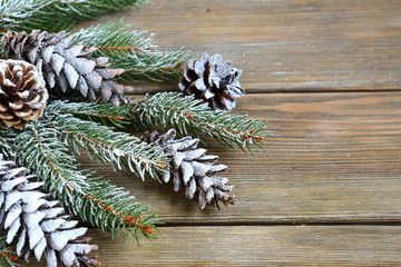 Christmas fir branch with cones