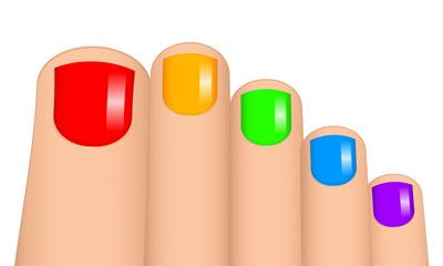 Vector illustration of colorful toenails