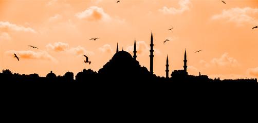 mosque shape contour