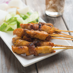 Asian gourmet chicken sate
