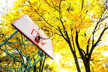 old basketball ring with beautiful autumn trees in the backgroun