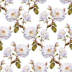 White roses bush botanical watercolor seamless pattern
