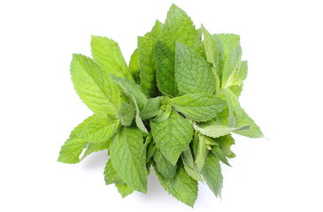 Bunch of fresh green mint on white background