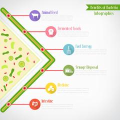 Benefits of bacteria infographics, vector eps10