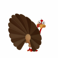 Toon Turkey Looking Back
