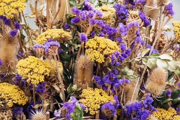 Beautiful decorative dried flowers