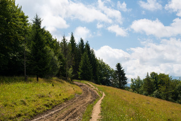 Dirt road in the Ukrainian Carpathians