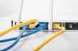 Yellow and Blue Ethernet Cables in Wireless Router
