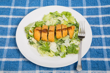 Chicken Breast and Barbecue Sauce on Caesar Salad