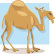 dromedary camel cartoon illustration - 73036117