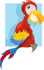 macaw parrot cartoon illustration