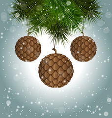 Brown cones like christmas balls hanging on pine branches in sno