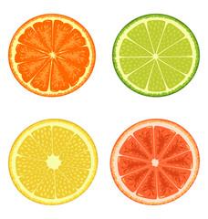 Citrus set isolated on white background