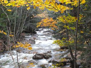 Mountain Creek White Mountains NH