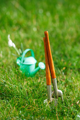 time for garden now…. decorative small gardening tools and sno