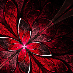 Symmetrical flower pattern in stained-glass window style. Red pa