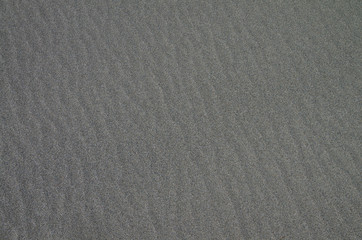 Gray sandy surface as background.