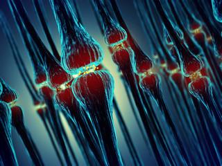 Synaptic transmission , Synapses , Nervous system