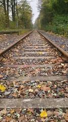 Bahngleis im Herbst