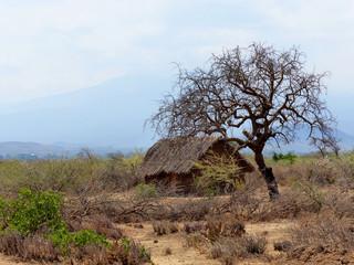 Afrikanische Hütte am Lake Eyasi Tansania