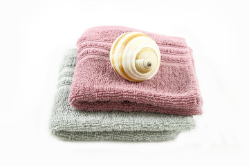 Sea snail on towel spa concept