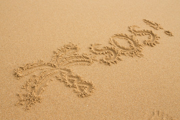 SOS and painted palm - Inscription on the sand of tropical beach