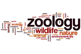 Zoology word cloud poster