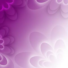 purple lotus form flower