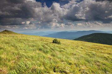 Beautiful landscape. Meadows in Bieszczady mountains.