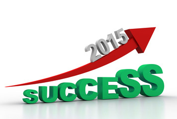 success in year 2015