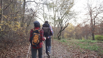 Couple hiking in autumn forest
