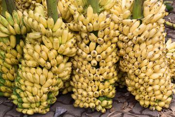 Bunch of ripe bananas background on the market in Sri Lanka